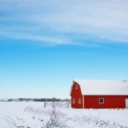 snow barn photo