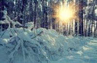 Awaken to God's Presence Transforming Mission