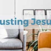 As Christian disciples, in the midst of times of stress and conflict, we trust Jesus. Read more at the link above. #trust #jesus #church #faith #pastors #coaching #transformingmission Trusting Jesus