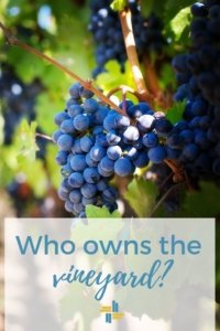 Who Owns the Vineyard? There is a Wideness in God's Mercy with Transforming Mission