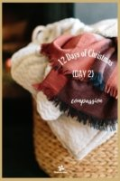 12 Days of Christmas - Day 2 - Transforming Mission
