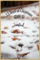 The 12 Days of Christmas - Day 5