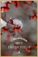 12 Days of Christmas - Day 7