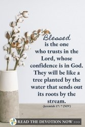 Plant Your Faith in A Place of Trust - Jeremiah 17 - God is with Us